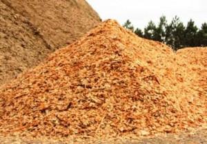 n-no-biomassa-5468