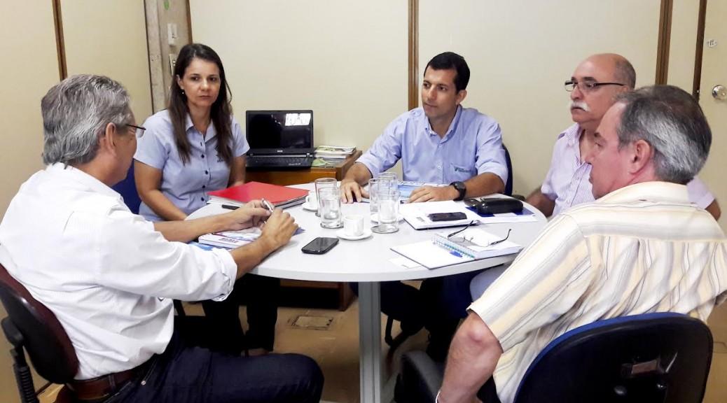 Solução para principal gargalo da ovinocultura surgiu de sistema criado em Mato Grosso do Sul