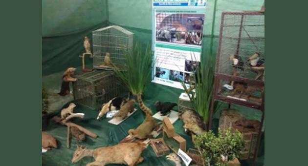 PMA e parceiros realizam diversas atividades de Educação Ambiental com crianças e adolescentes em Naviraí