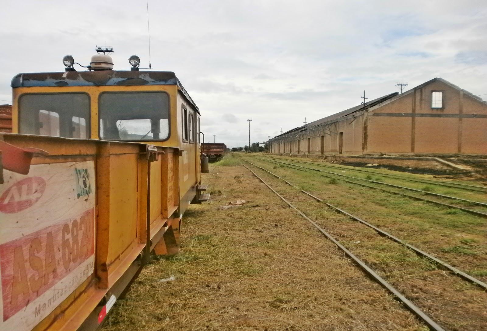 Fórum Central: MS discute reativação da antiga Ferrovia Noroeste com chineses