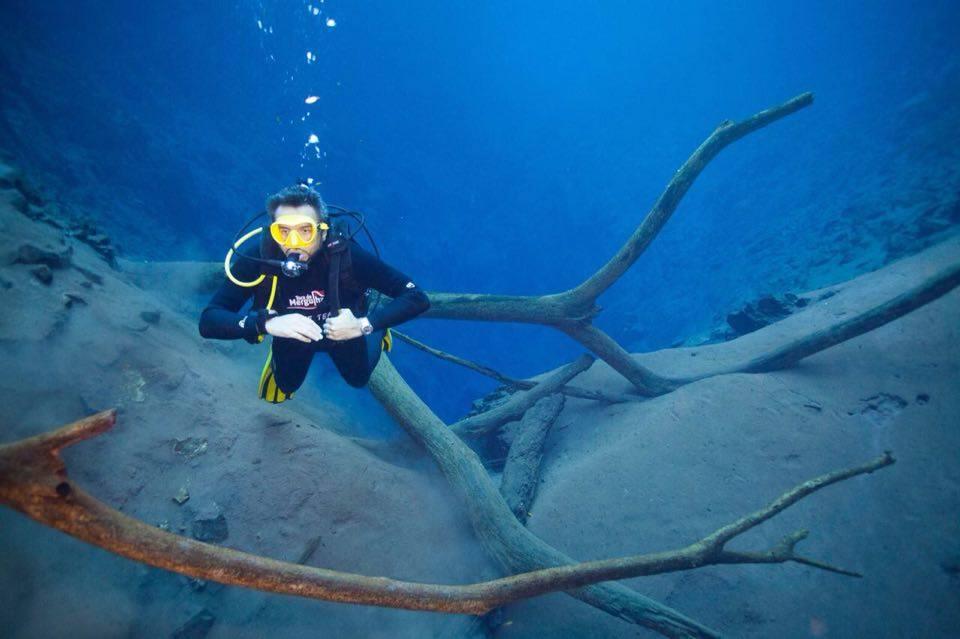 Bonito encanta fotógrafo subaquático e deve entrar na lista de aventureiros de 19 países