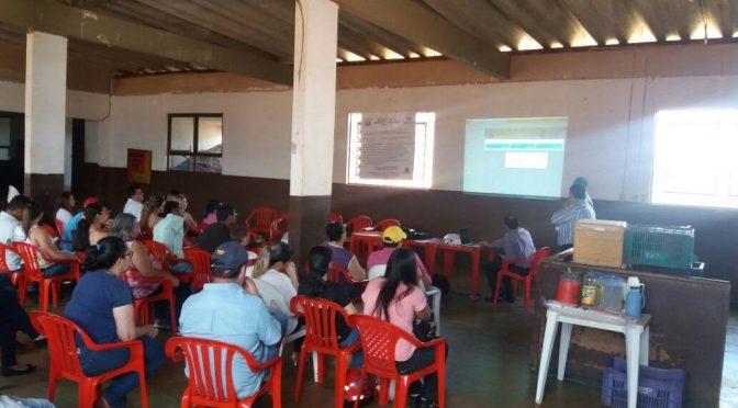 Agricultores aderem ao uso de aplicativo em celulares para gerenciar as finanças das propriedades