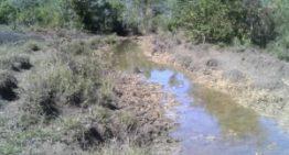 MPMS vai investigar supressão de mata nativa em Bonito