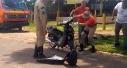 Cobra tenta atacar mãe e filho ao se esconder em motocicleta
