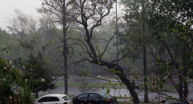 Maior parte do Estado deve registrar pancadas de chuva ao longo do dia, segundo o Inmet. (Foto: Edemir Rodrigues/Subcom)