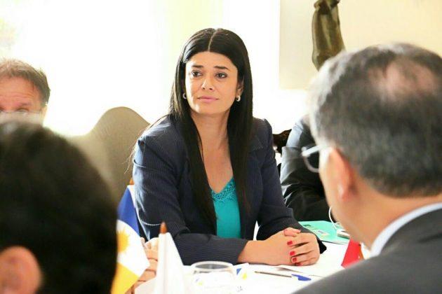 Rose destacou importância de projeto para integração do Brasil com o Mercosul e implementação da rota bioceânica. (Foto: Divulgação)