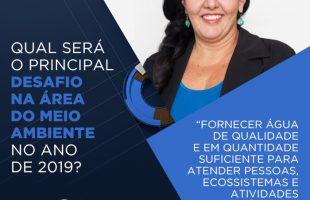Panorama discute desafios do governo de Bolsonaro na área ambiental. (Imagem: TV Cultura/Adaptação)