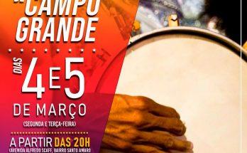 Governo do Estado é parceiro do Desfile das Escolas de Samba de Campo Grande. (Imagem: Divulgação)