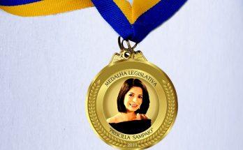 Câmara concederá medalha Priscilla Sampaio a jornalistas de MS. (Foto: Divulgação)