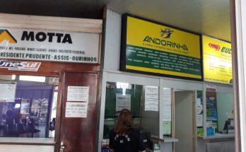 Empresas de ônibus foram fiscalizadas pelo Procon-MS para verificar cumprimento do Estatuto do Idoso. (Foto: Procon-MS/Divulgação)