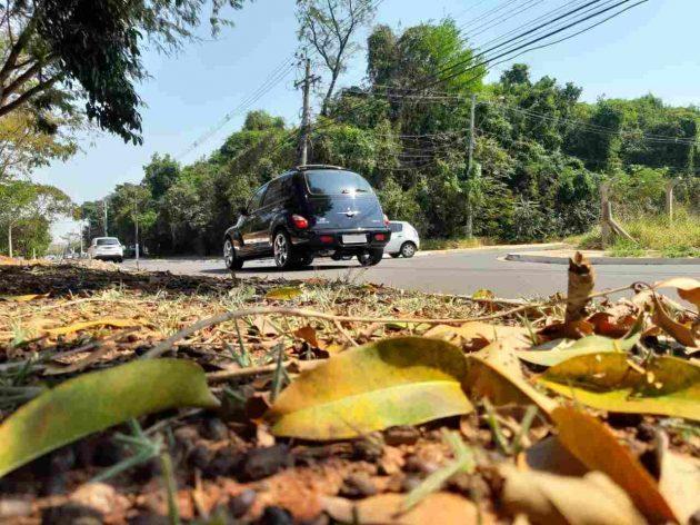 Terça-feira segue com céu claro em Campo Grande, mas cidade deve registrar queda de até 5 ºC em temperaturas. (Foto: Humberto Marques)