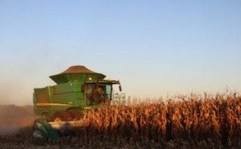 Resultado da colheita do milho segunda safra foi o melhor da história. (Foto: Aprosoja-MS/Divulgação)