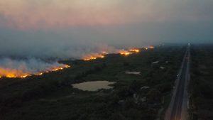 Fogo já consumiu cerca de 50 mil hectares no Pantanal, estimam autoridades. (Foto: Semagro/Divulgação)