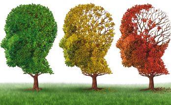 Programa da TVE Cultura MS discute o Alzheimer, tipo de demência que se manifesta mais comumente em idosos. (Imagem: Reprodução)